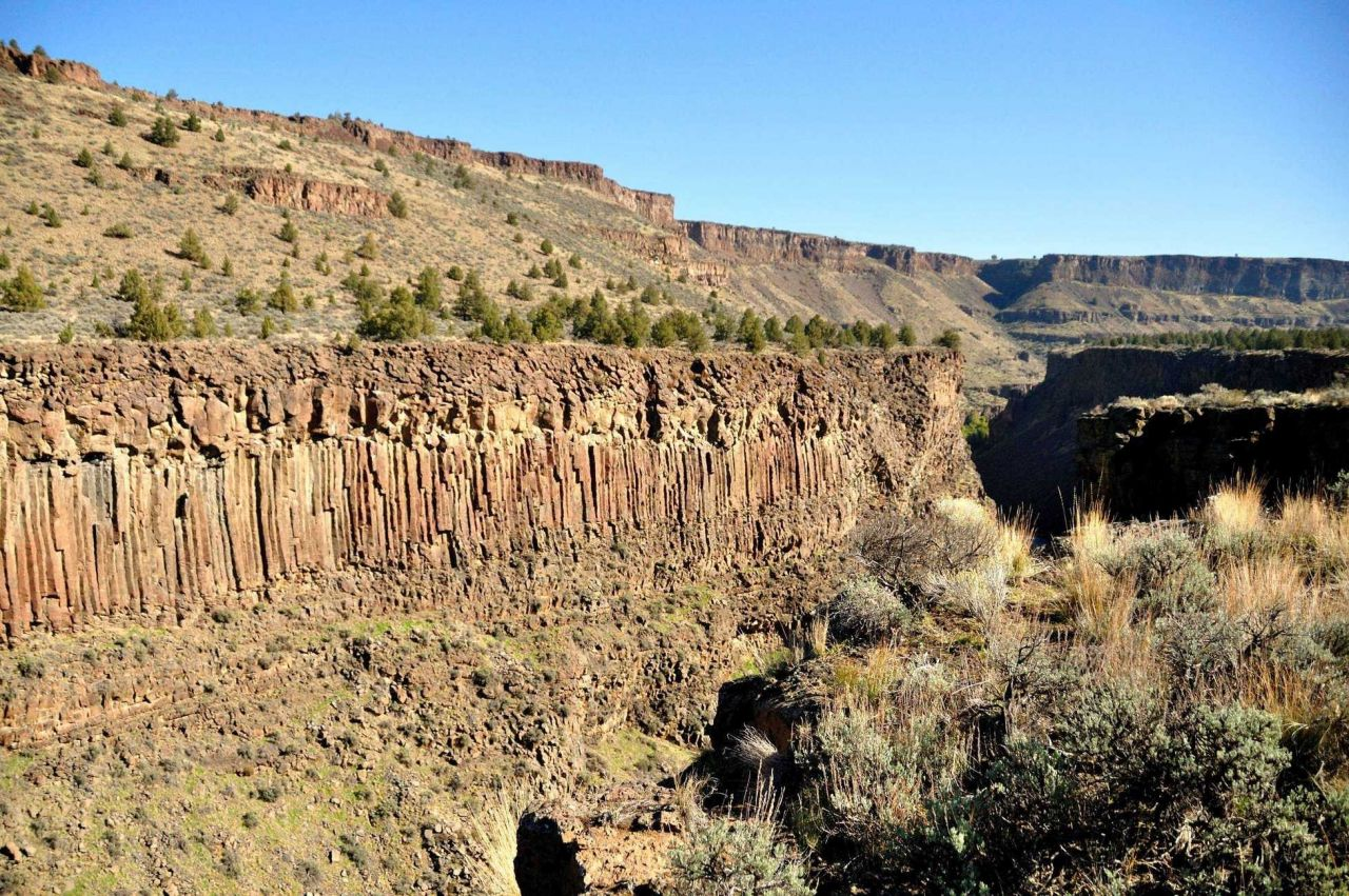 A classic example of columnar jointing in an outcrop of Columbia River basalt. Photo