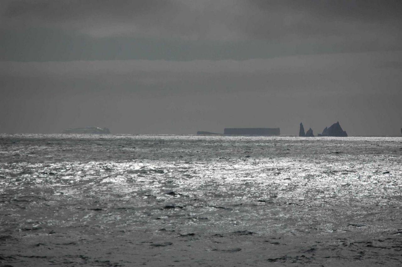 Icebergs Photo