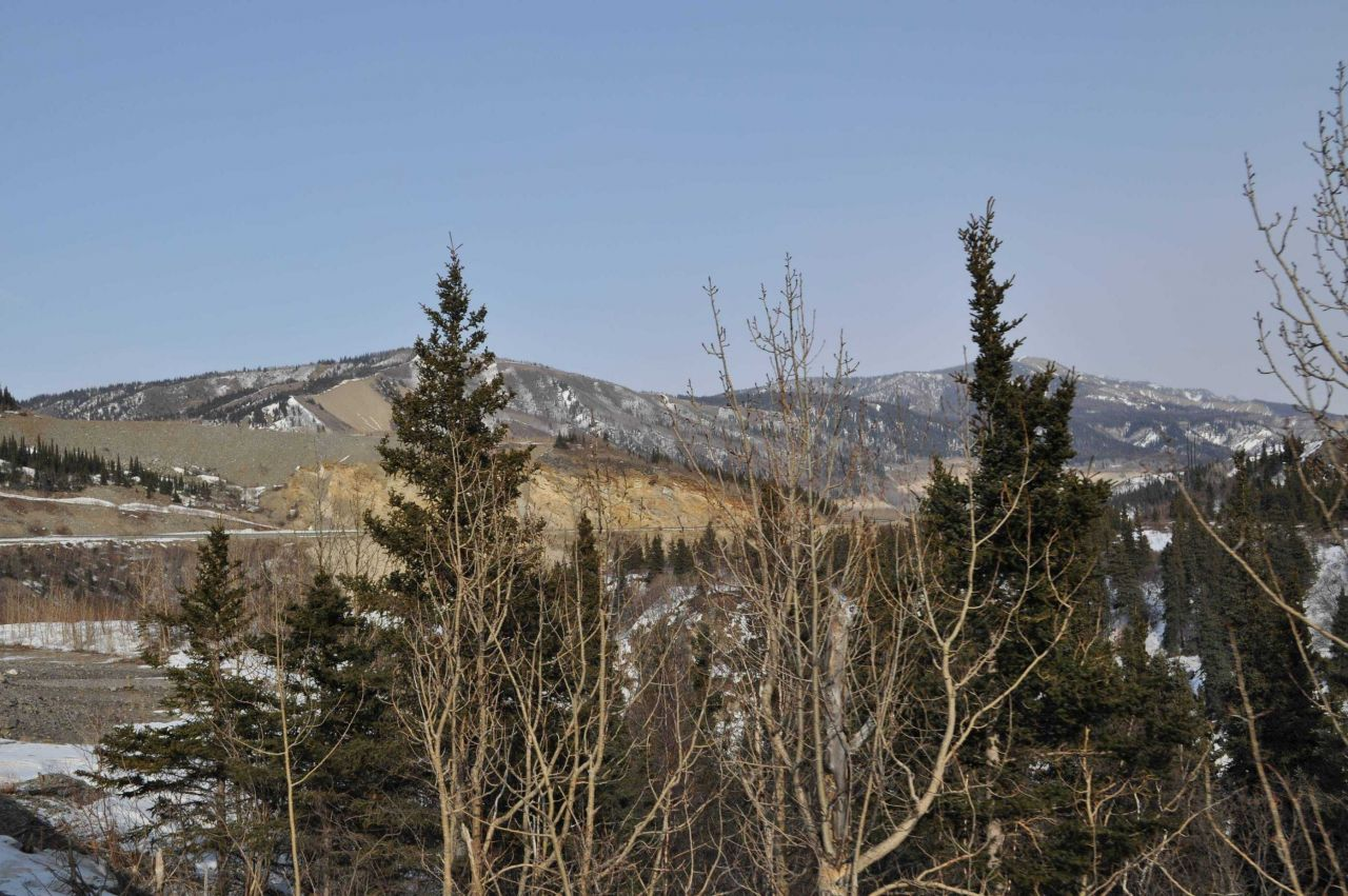 A scene along the Alaska Railroad Aurora Winter Train Photo
