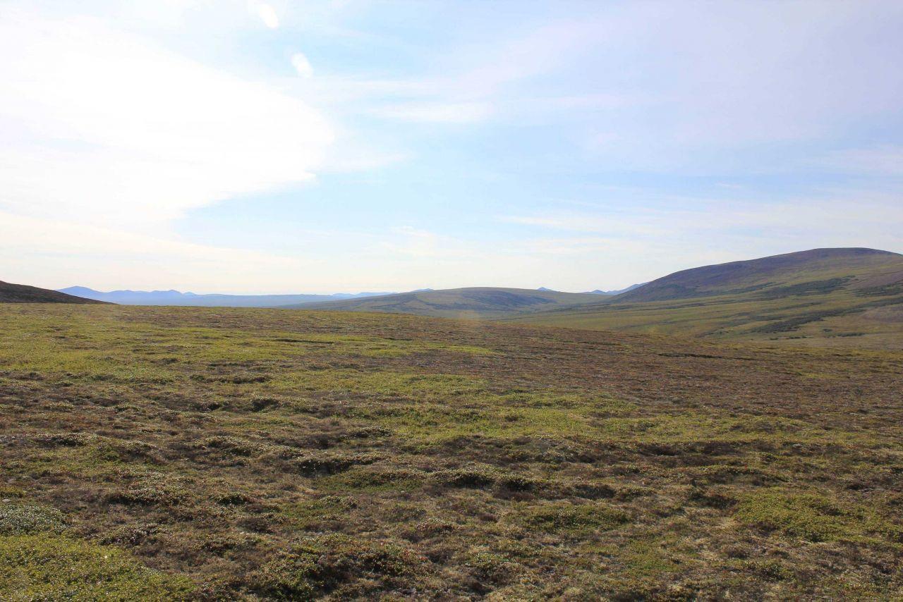 A view along the Kougarok Highway. Photo