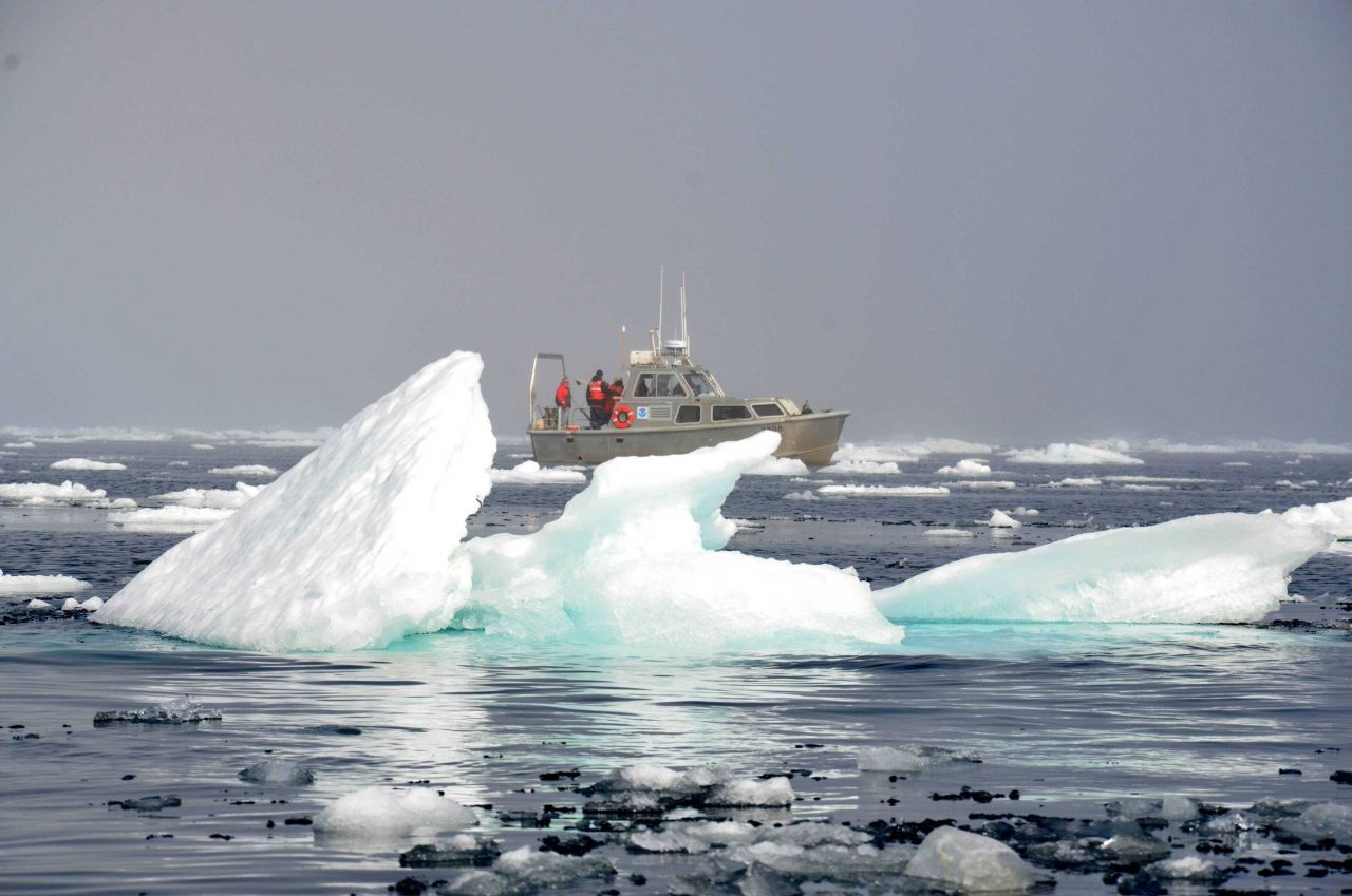Survey launch from NOAA Ship FAIRWEATHER in the pack ice about 40 miles west of Point Barrow. Photo