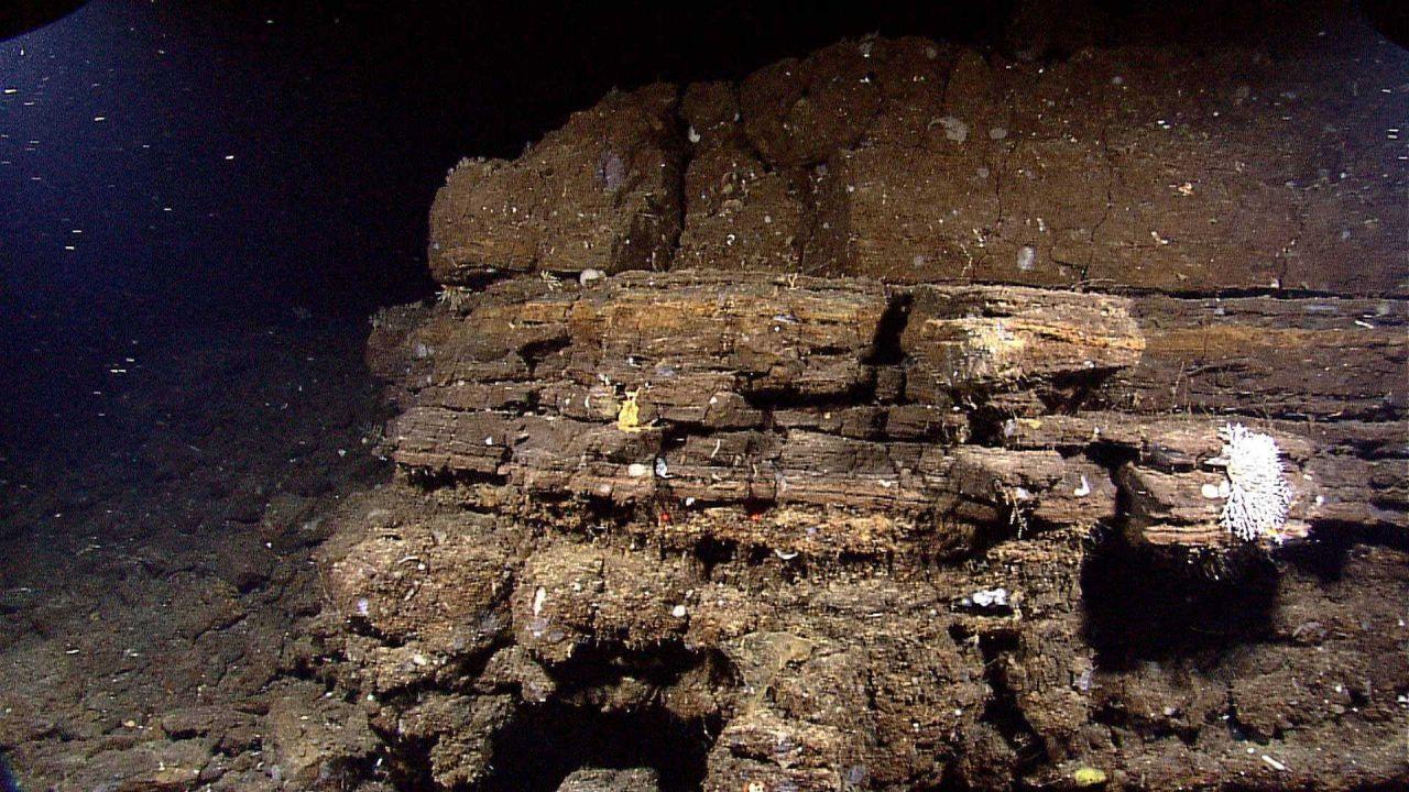 Three layers of rock, each with distinct characteristics. Photo