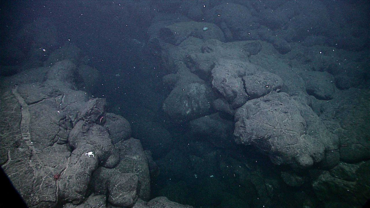 A large fissure in the Galapagos rift area flanked by pillow lavas on each side. Photo
