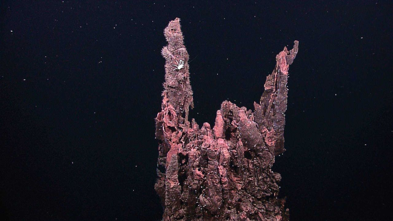 Inactive sulfide chimneys along the pinnacle of one tall extinct sulfide spire Photo