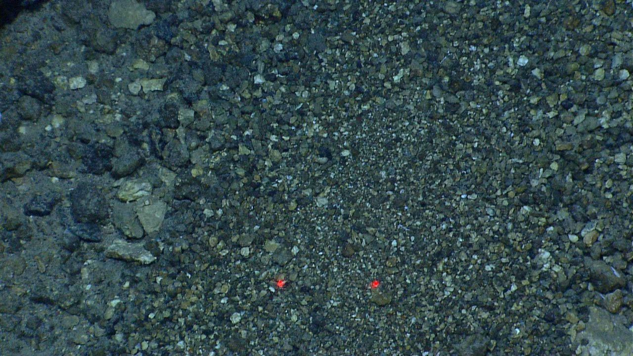 Pebbly substrate with iron oxide - seemingly devoid of life Photo