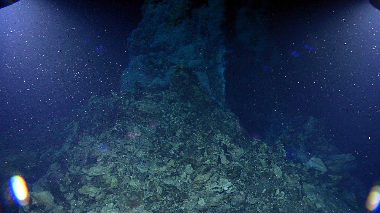 Hydrothermal chimney spire with shrimp agglomeration at top Photo