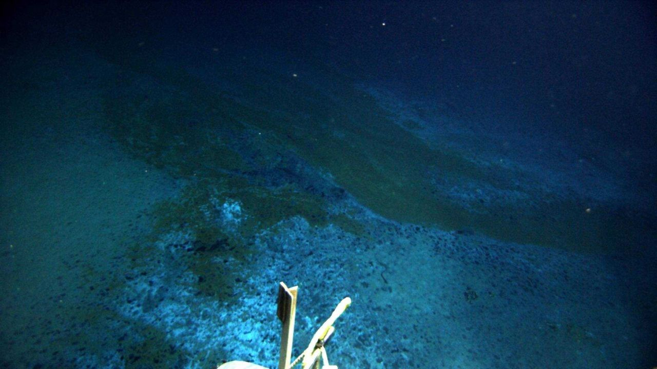 The ROV is following an area of discolored sediment to ultimately a large brine pool. Photo
