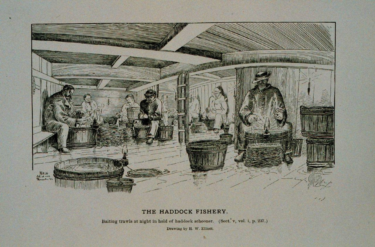 Baiting trawls at night in hold of haddock schooner Drawing by H Photo