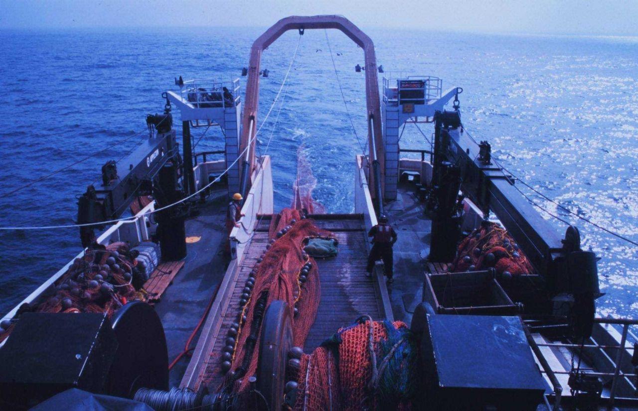 Streaming net from NOAA Ship MILLER FREEMAN Photo
