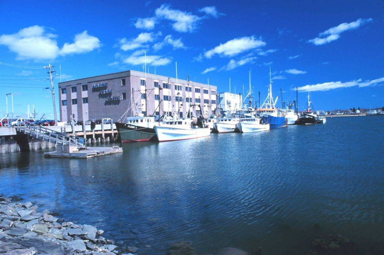 Fishing boats tied up at the Portland Marine Trade Center. Photo