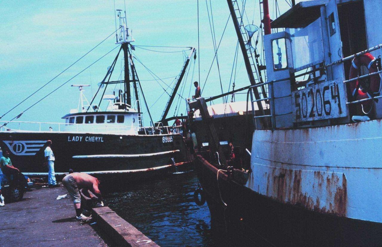 The F/V LADY CHERYL leaving port Photo