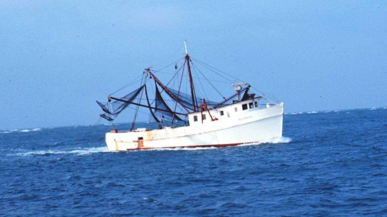 A shrimp boat underway Photo