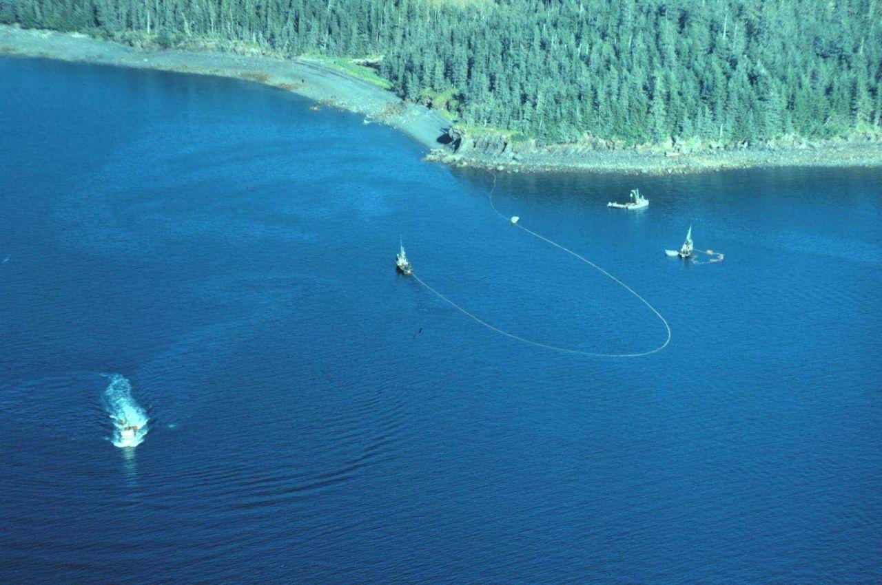 Salmon purse seiner operating in Prince William Sound Photo