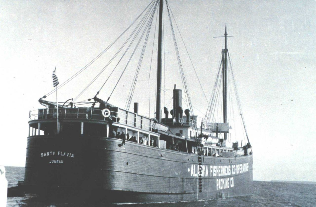 The SANTA FLAVIA - a floating cannery owned by the Alaska Fisheries Co-operative Packing Company. Photo