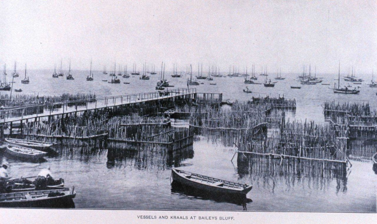 Vessels and kraals at Baileys Bluff Photo