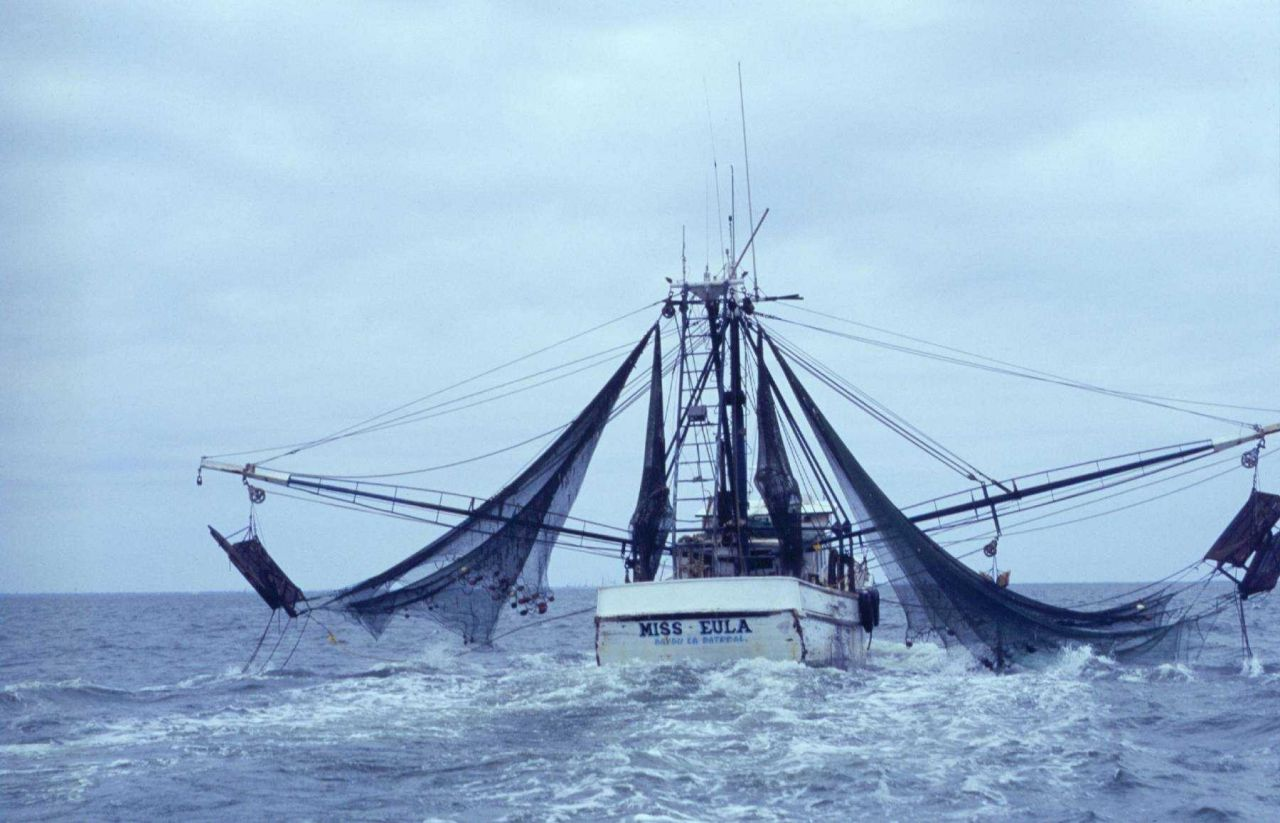 The distinctive Gulf of Mexico shrimp trawler prepares to lower its twin side-trawls off the Alabama coast. Photo