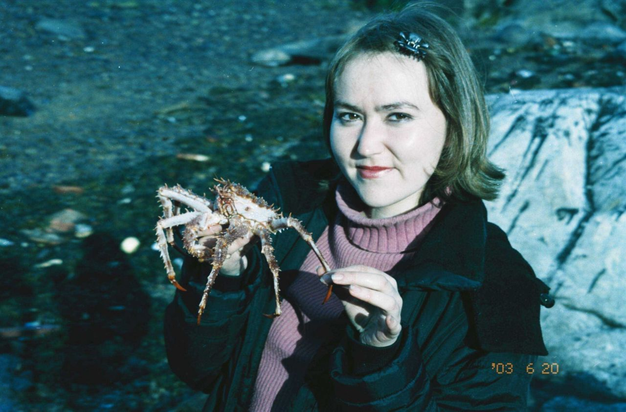 The domestic crab (Lithodes maja) is becoming very rare Photo