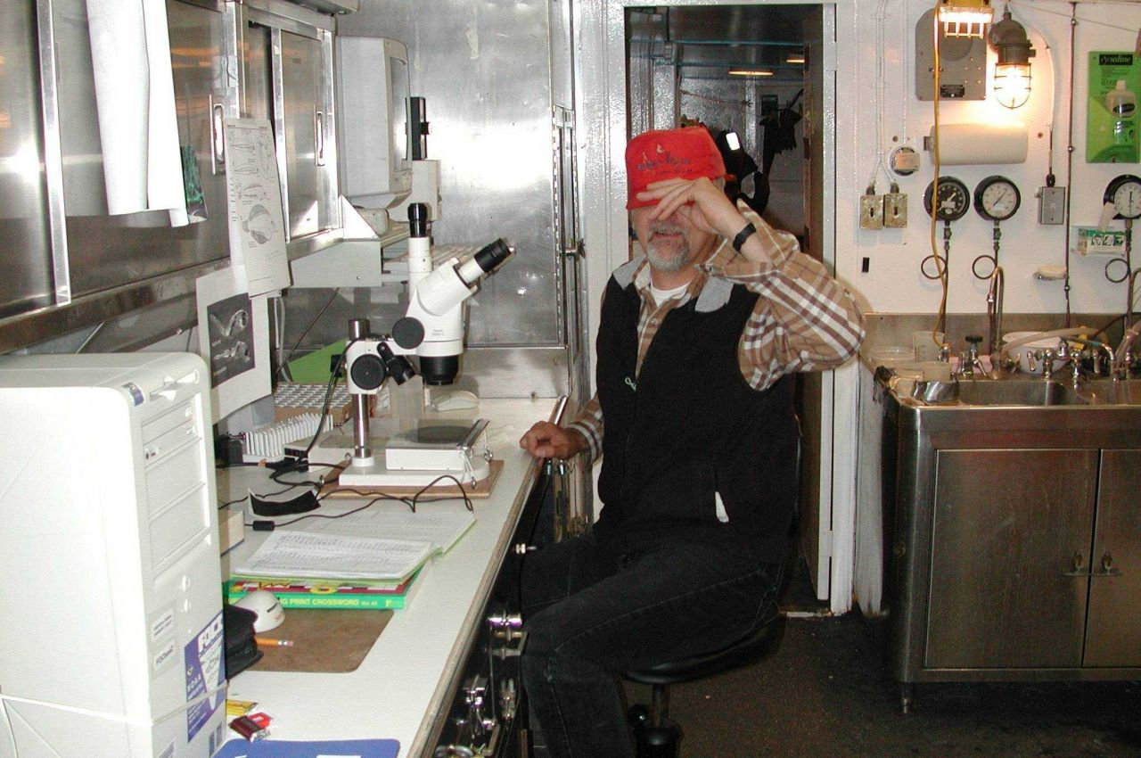 Scientist at microscope studying plankton obtained during Bongo net tow. Photo