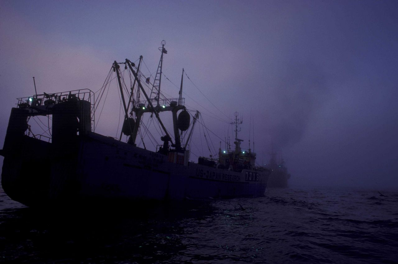 US-Japan Fisheries research vessel HATSUE MARU approaching Japanese factory ship in the eastern Bering Sea Photo
