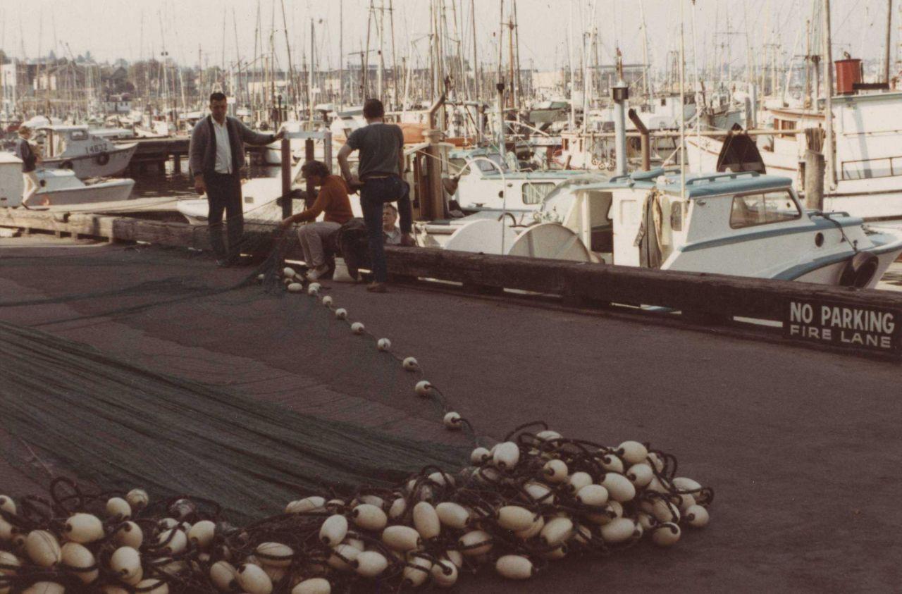 Repairing salmon nets Photo