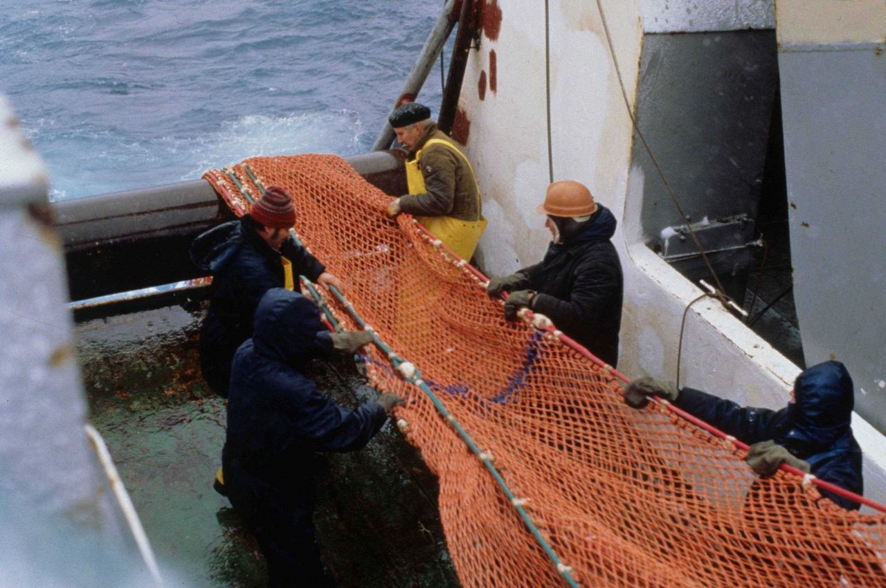 A team of AMLR scientists and Russian crew pull in trawling nets during the 1997 demersal fish survey aboard the R/V YUZHMORGEOLOGIYA Photo