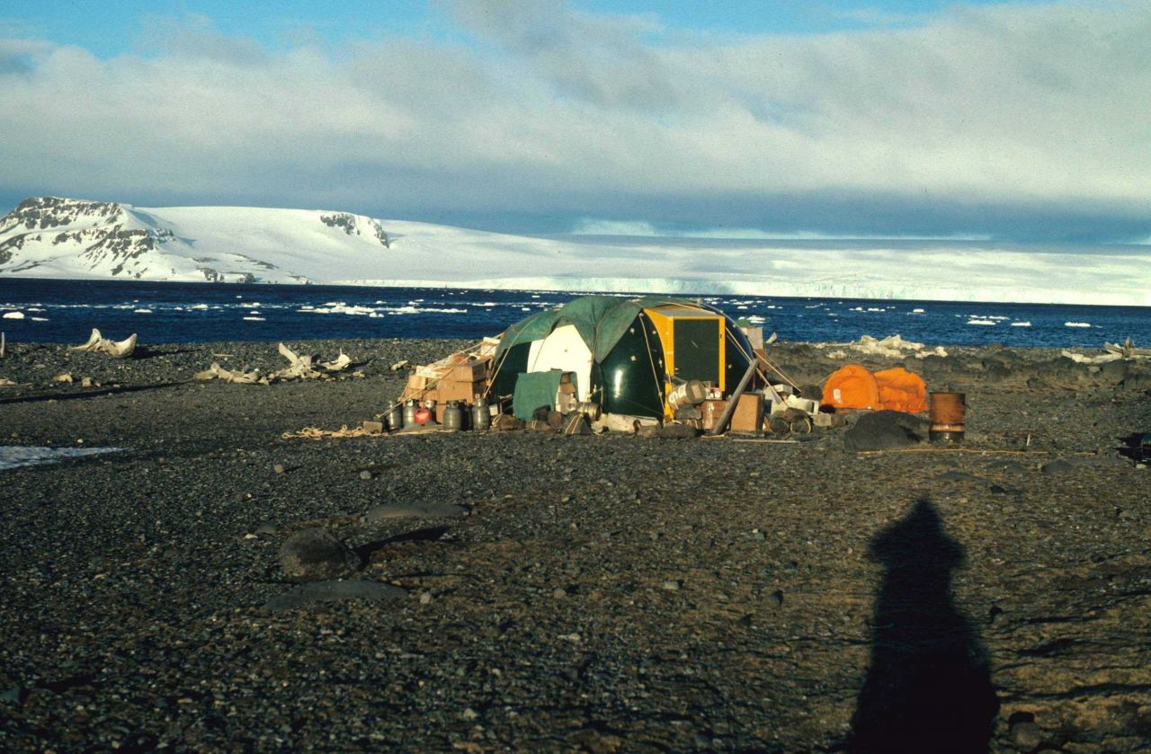 An early AMLR field camp at King George Island. Photo