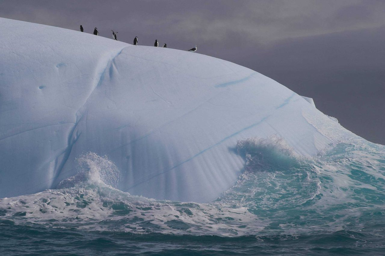 An iceberg in the South Shetland Islands. Photo