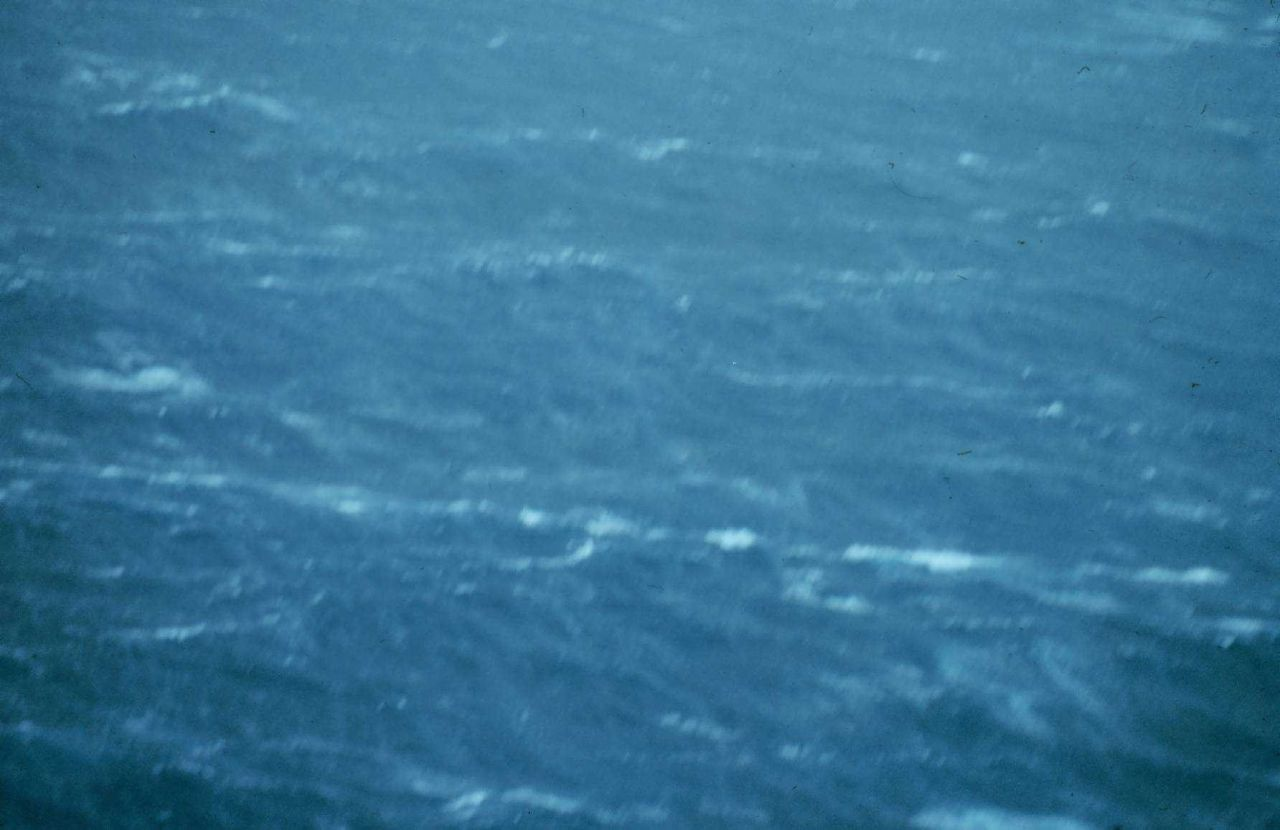 Sea surface as observed from 500 feet in Hurricane Belle. Photo