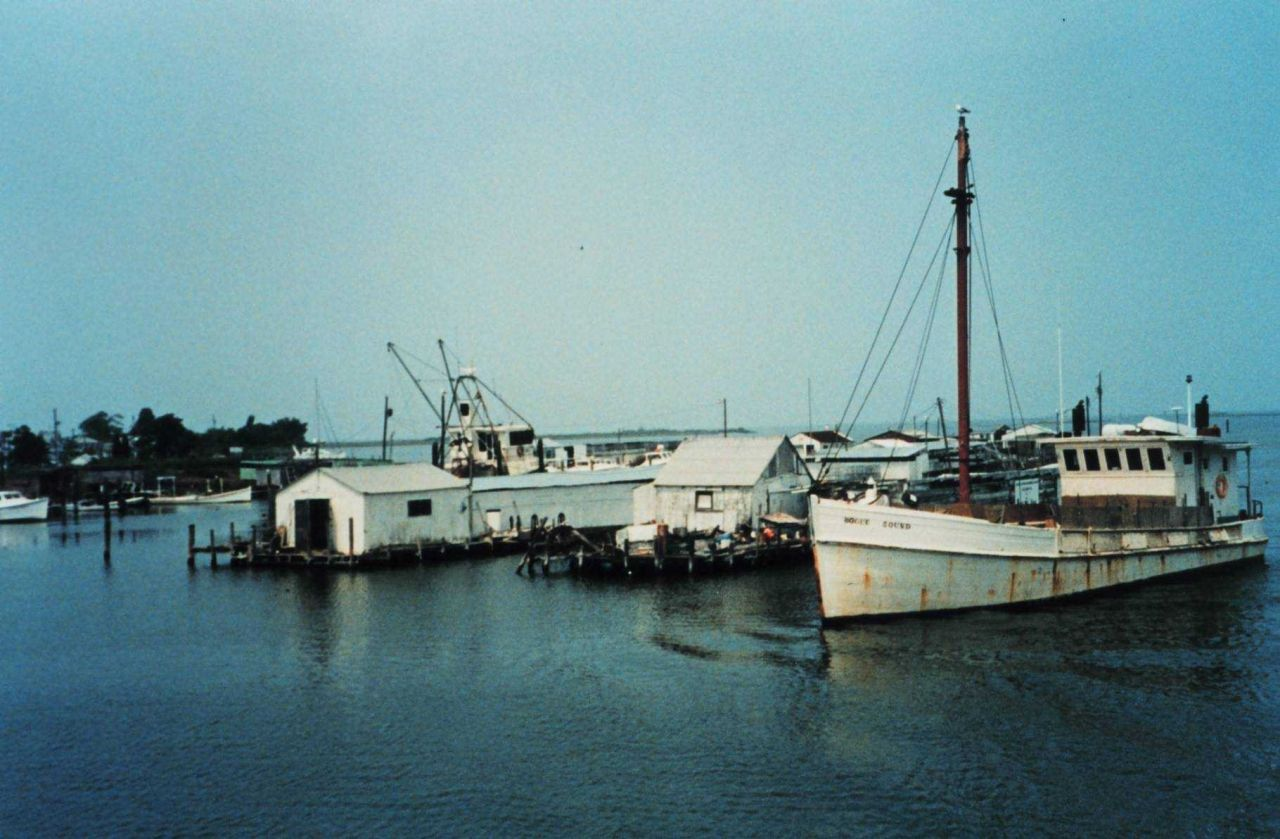Fishing boats in the harbor at Smith Island Photo
