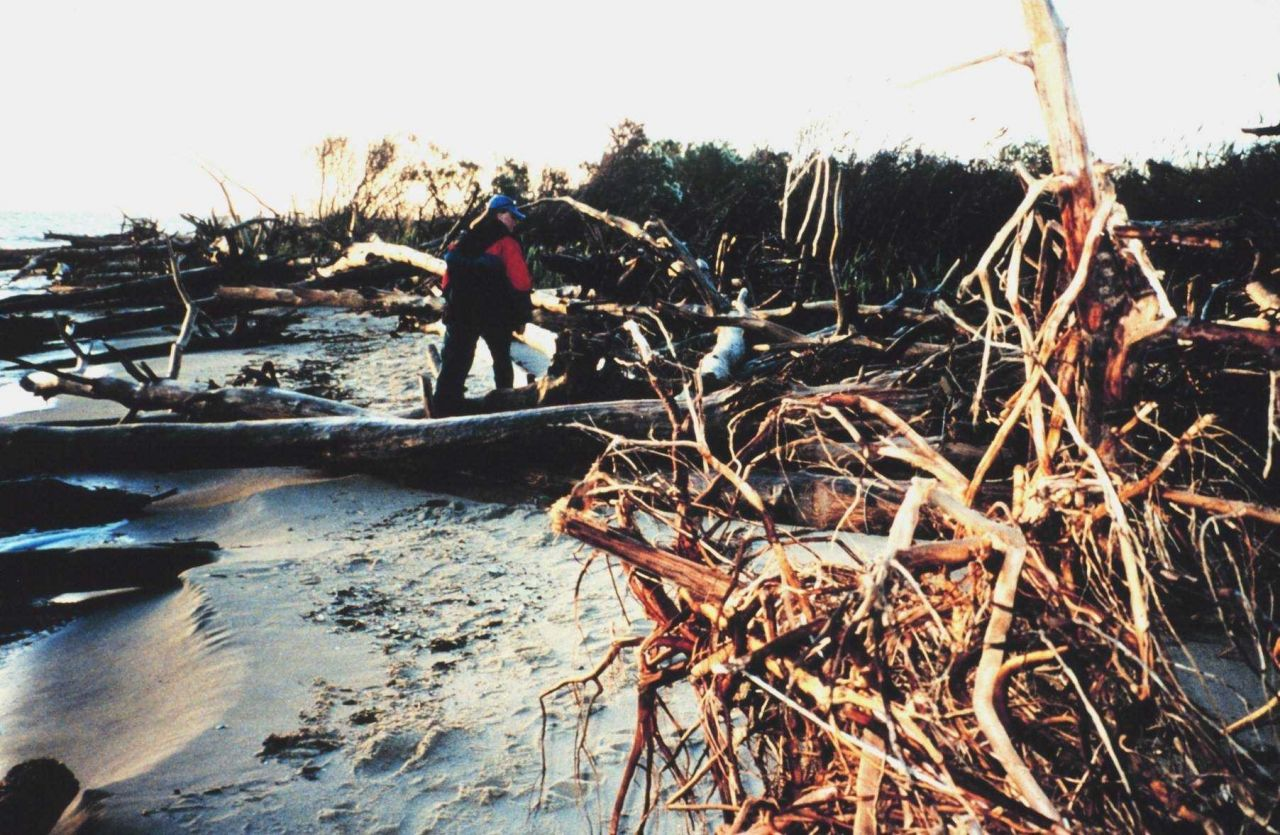 Erosion damage to Port Isobel Island as a result of Hurricane Floyd. Photo