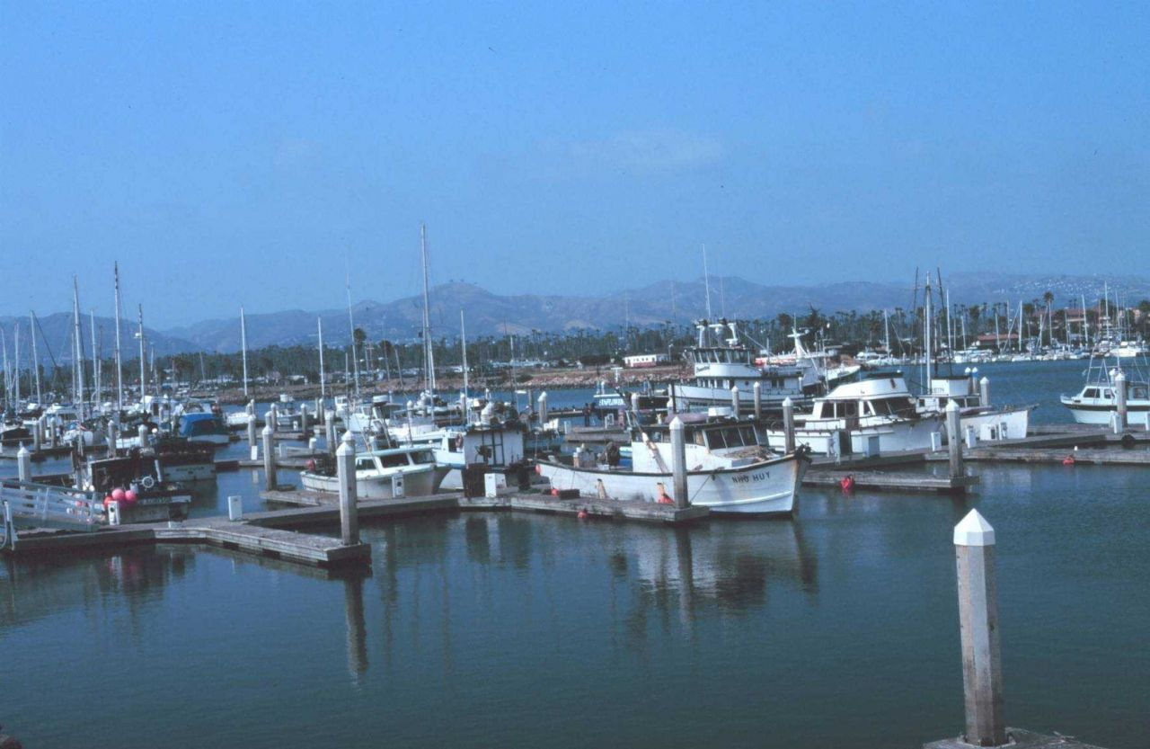 Fishing vessels at Channel Islands Harbor with the coast range visible Photo