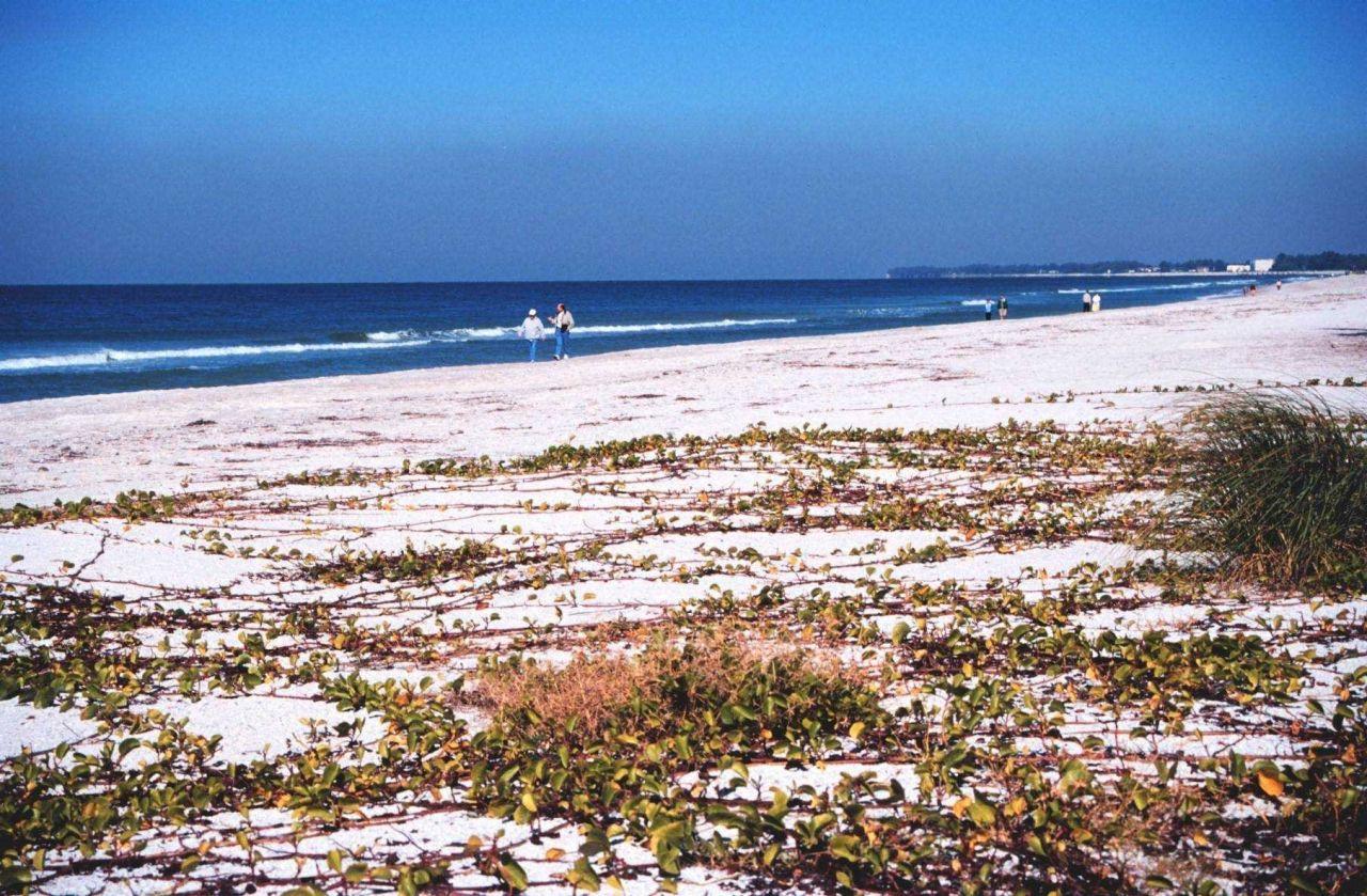 A view of the beach along the Gulf of Mexico Photo