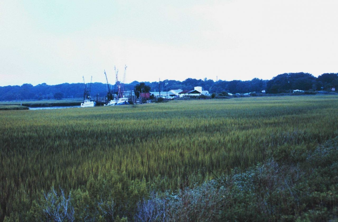 View across marsh of a small fishing village on Route 80 Photo