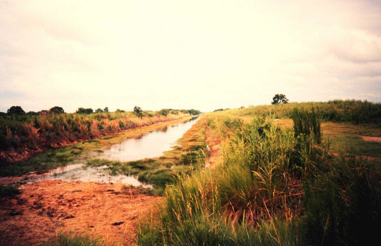 Canal used to drain property to convert and maintain former marsh land to pasture. Photo