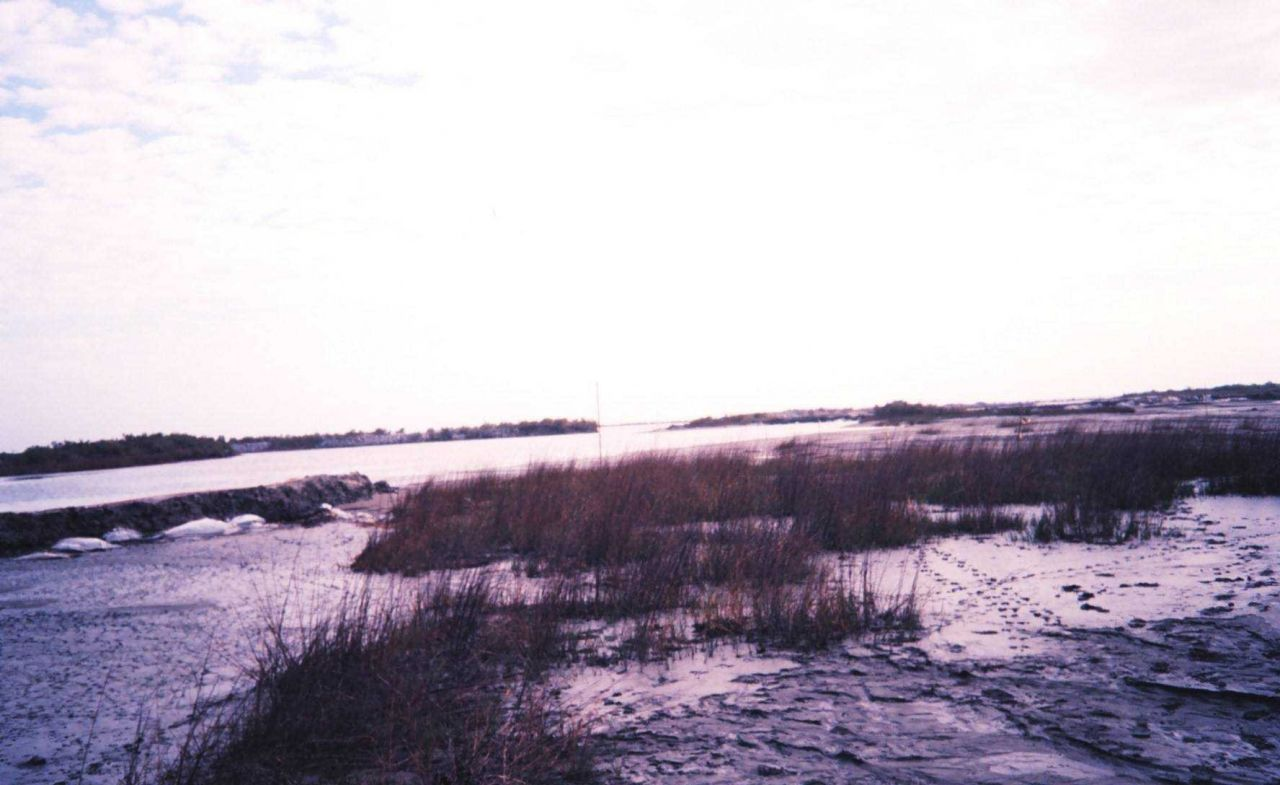 The Greenhill/East Timbalier dredge flow into natural marsh Photo