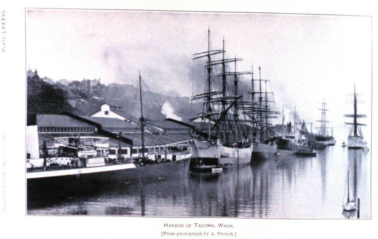 Tacoma, Washington, waterfront Photo