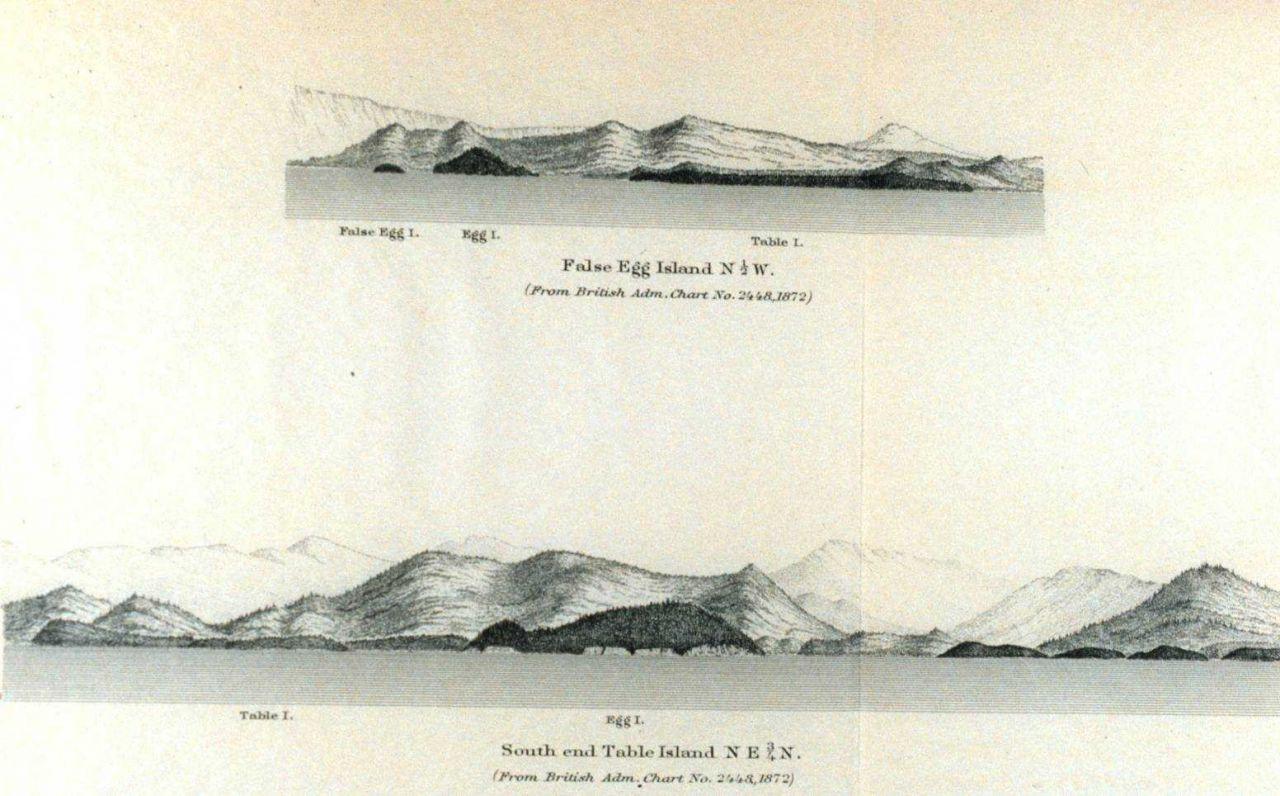 False Egg Island Photo