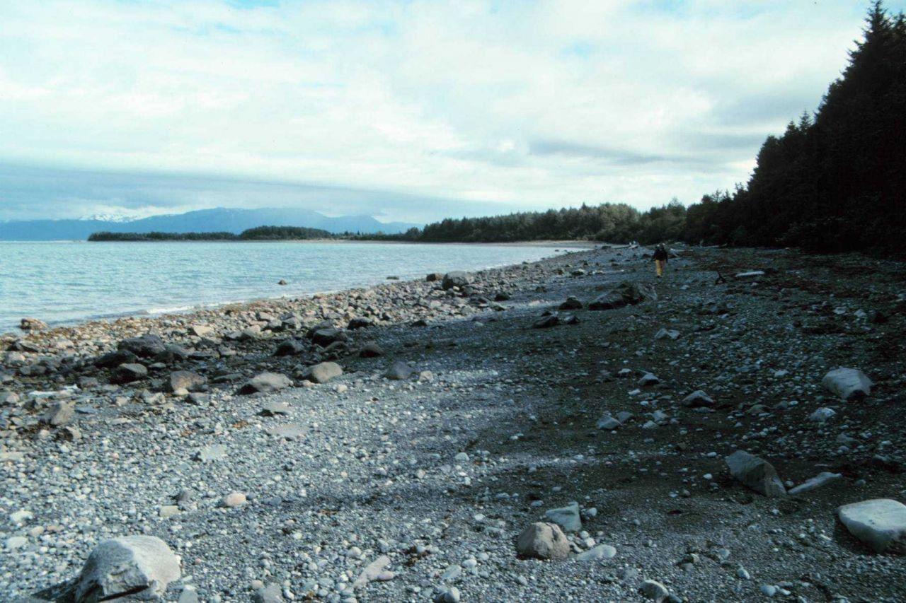 A beach of glacial debris in the Icy Bay area. Photo