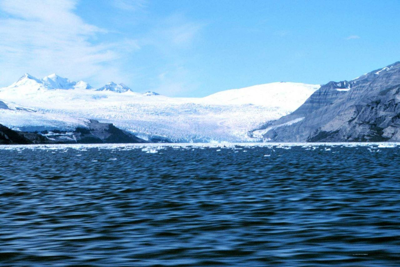 A glacier making its way to the sea in Icy Bay. Photo