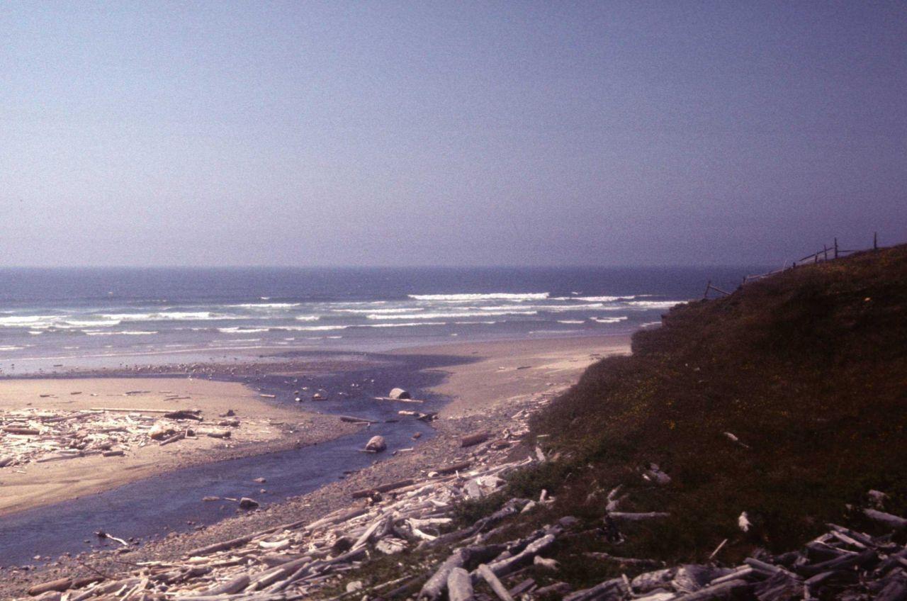 Beach with stream debouching in the ocean Photo