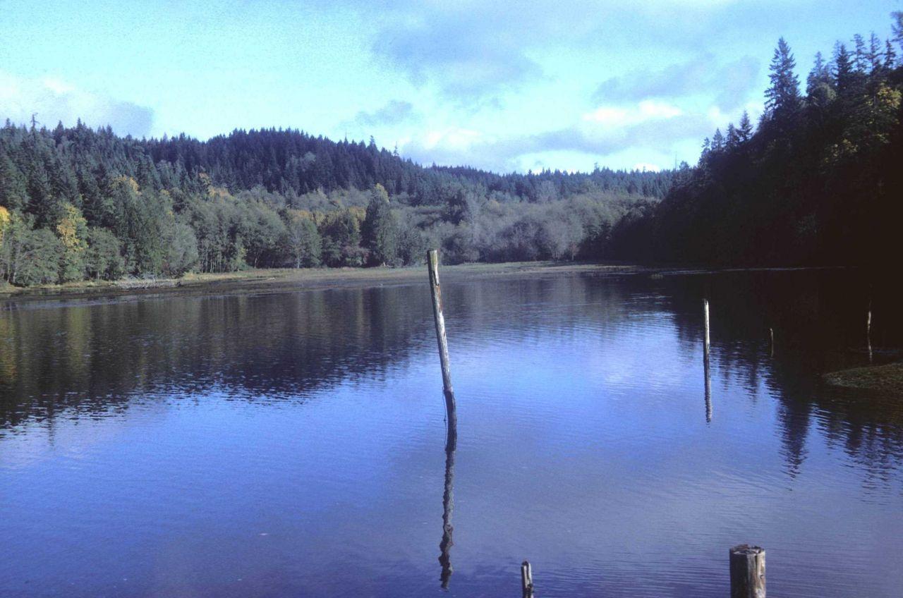 Tidal inlet Photo