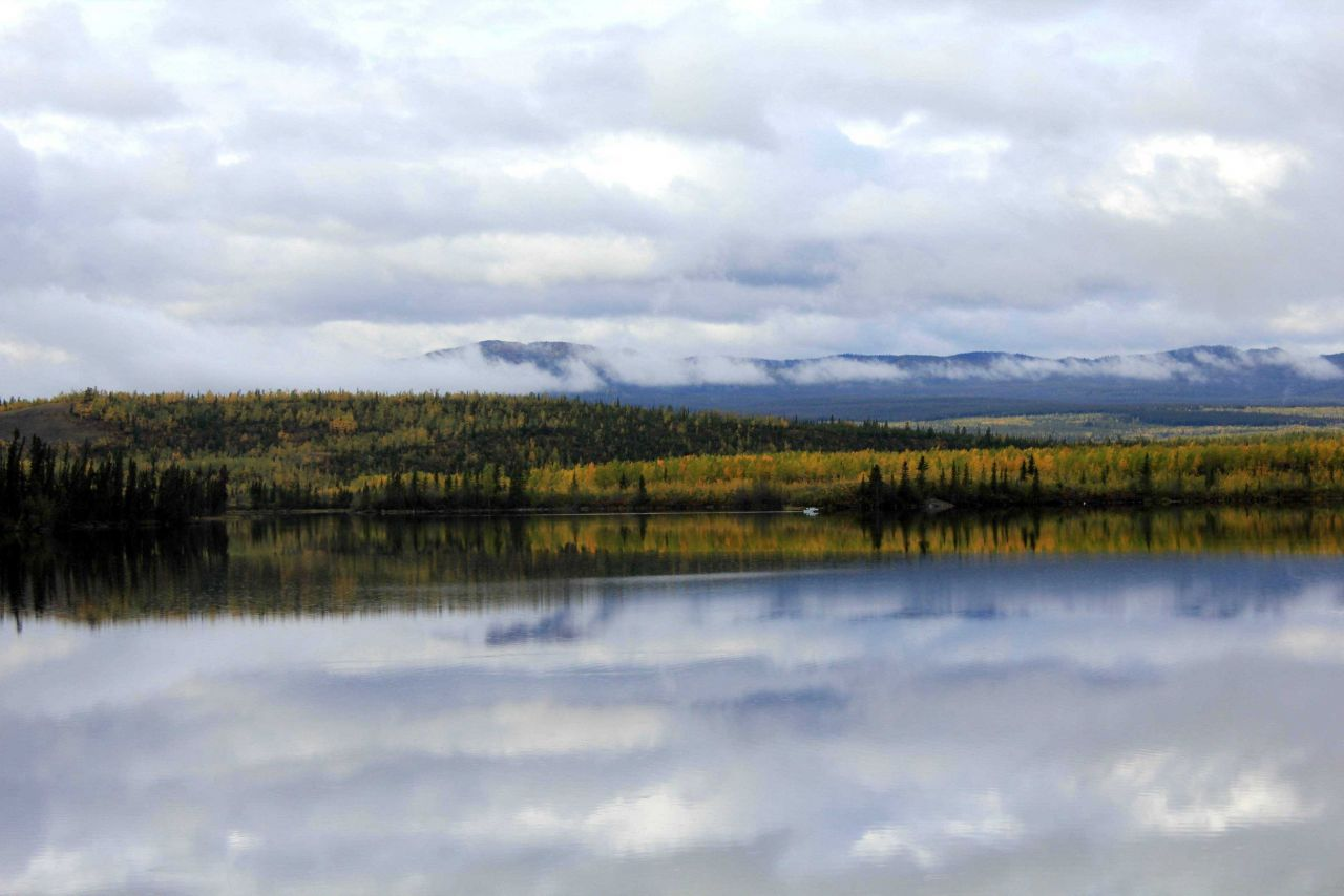 A fall scene along the Dempster Highway headed north to the MacKenzie River Photo