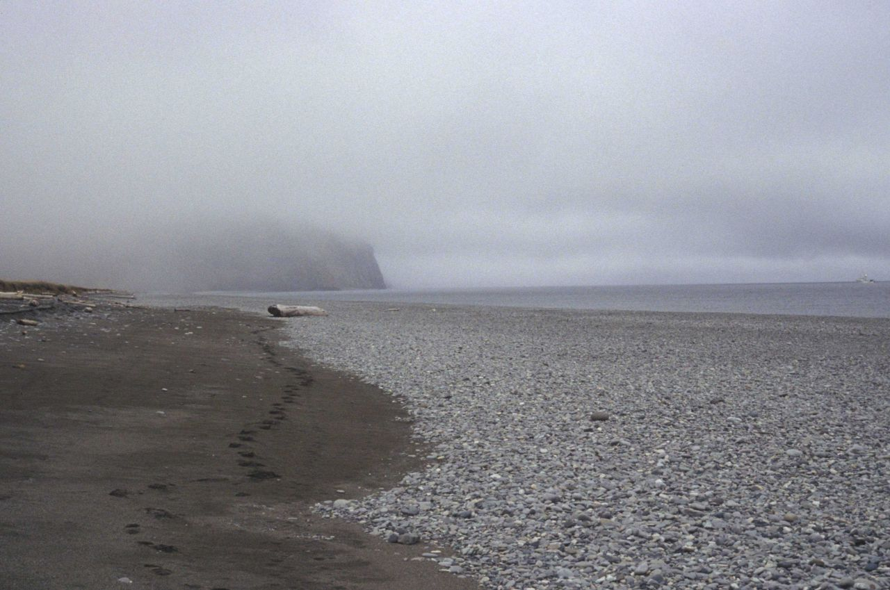 A lonely cobble and sand beach in the Aleutians. Photo