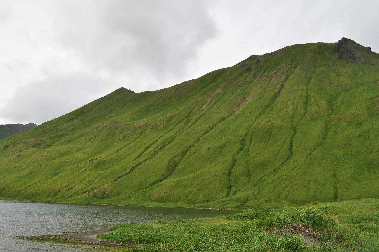 The green green hills of the Unalaska Island. Photo