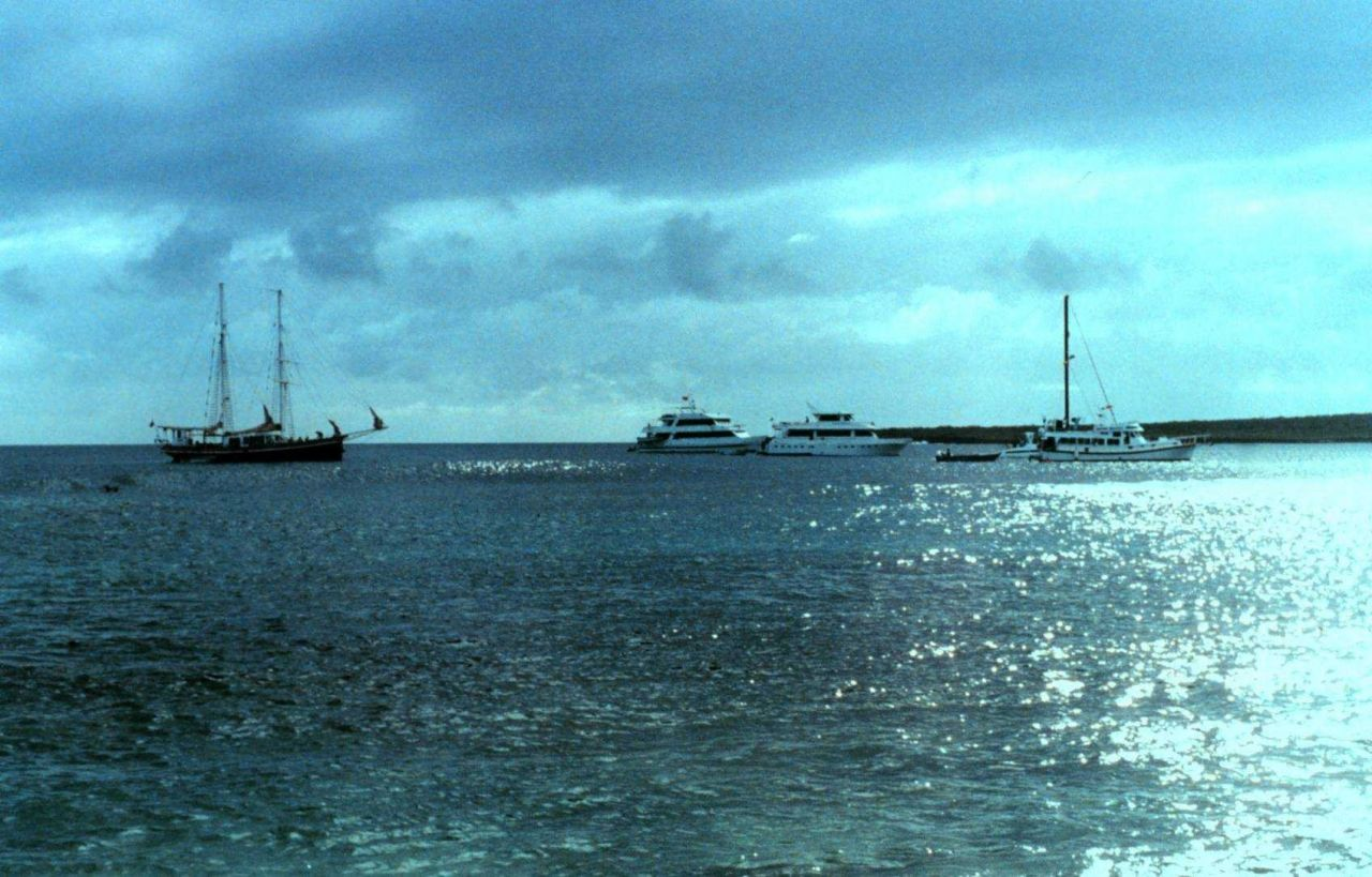 Charter boats anchored offshore. Photo