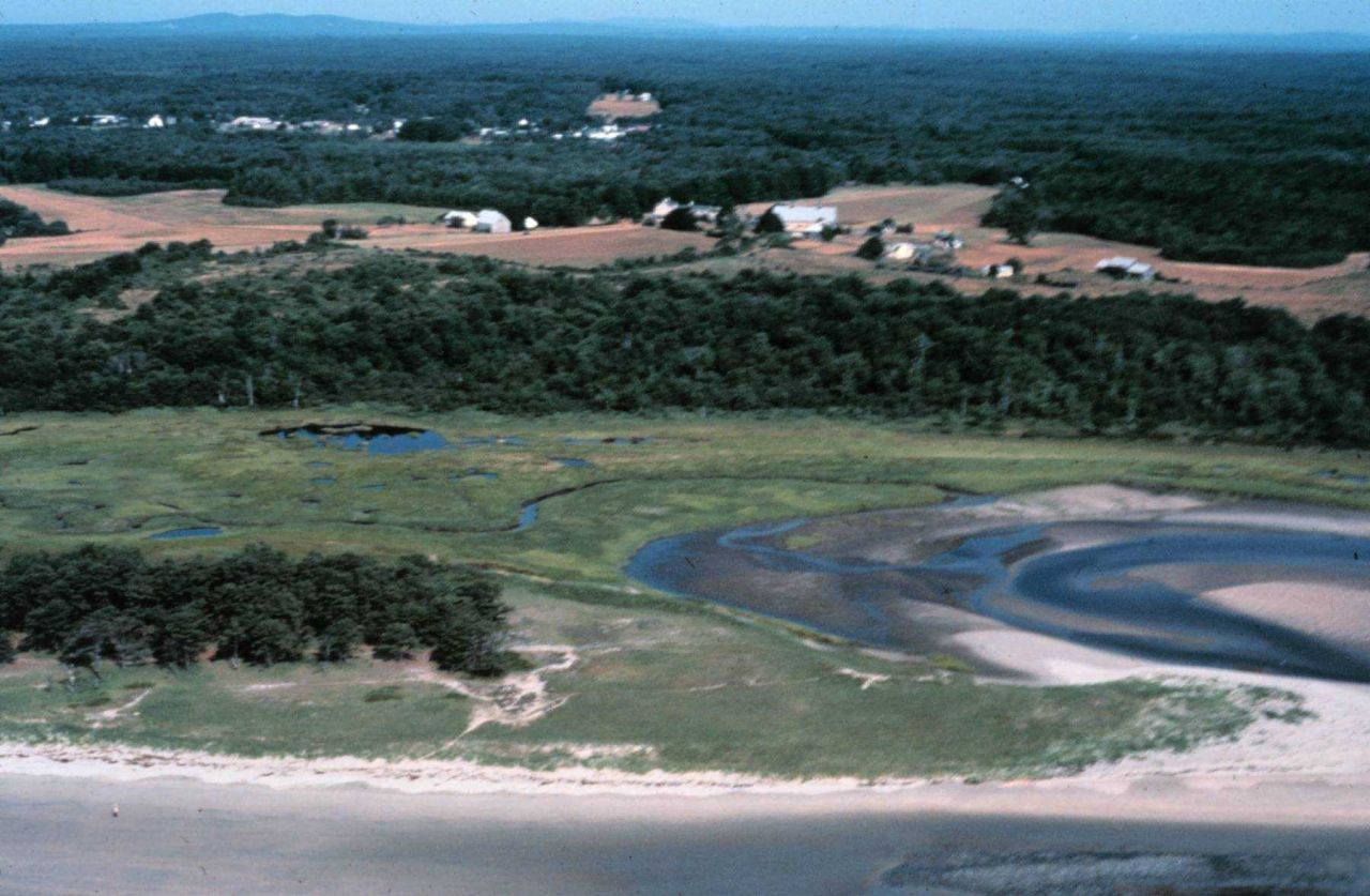 Wells National Estuarine Research Reserve. Photo