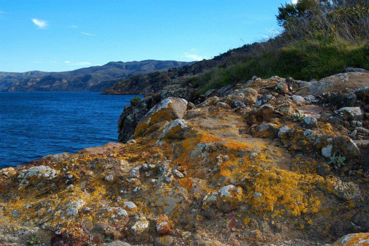 Lichen encrusted rocks adorn the cliffs of Santa Cruz Island. Photo