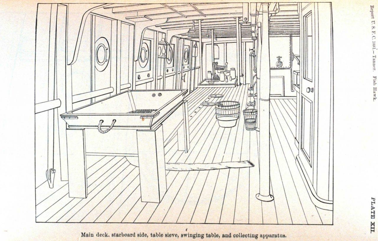 Main deck, starboard side, table sieve, swinging table, anc collecting apparatus Photo