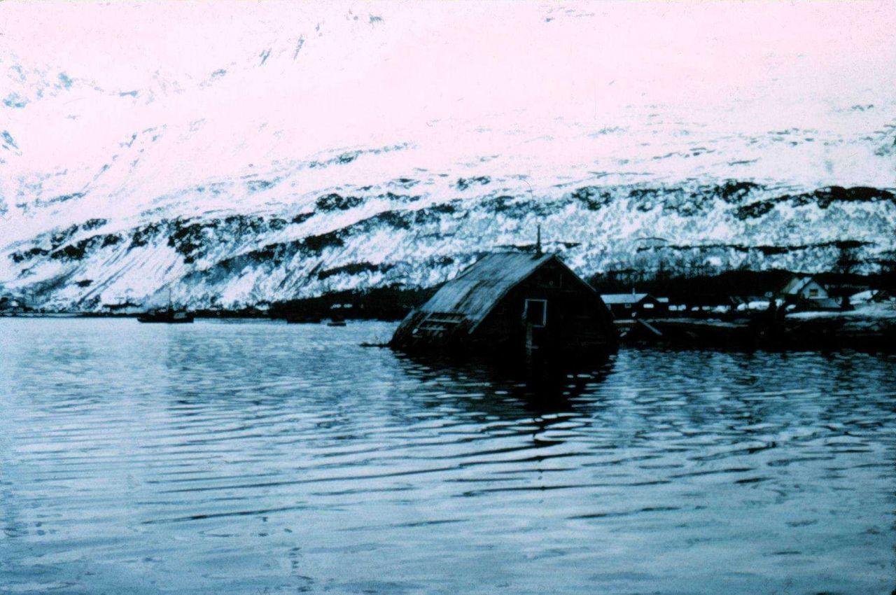 Radical changes in sea level following 1964 Alaska Good Friday Earthquake. Photo