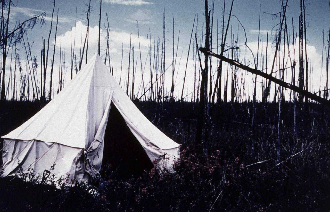 Camp on the Porcupine River Photo